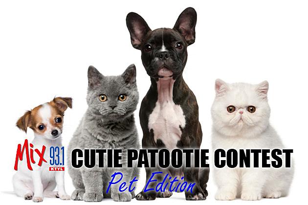 Mix 93-1 Cutie Patootie: Pet Edition 2014