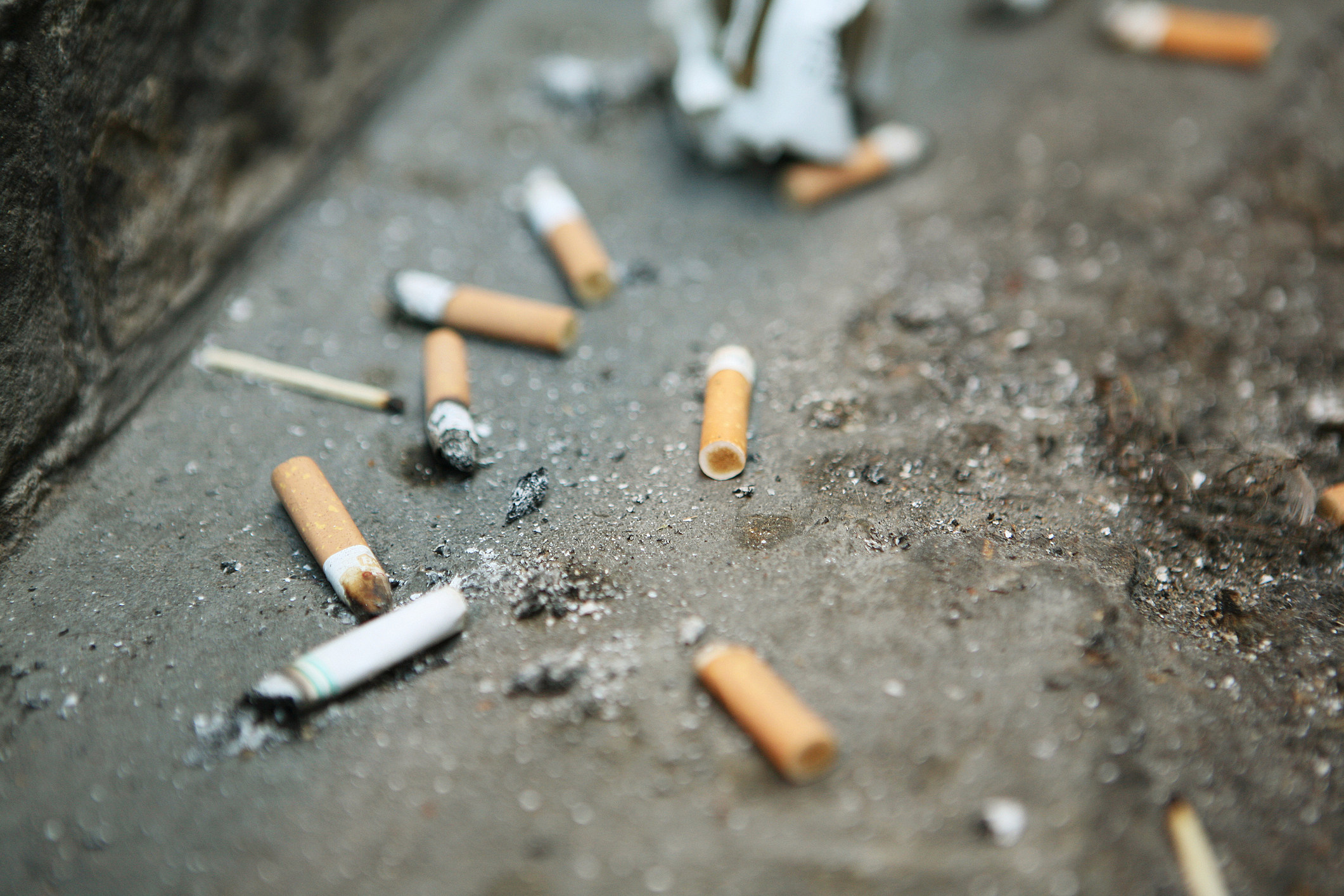 """cigarette litter I do not go a day on campus without seeing someone smoking a cigarette i always think to myself, """"it is 2015 don't they know that smoking is unhealthy"""" but."""